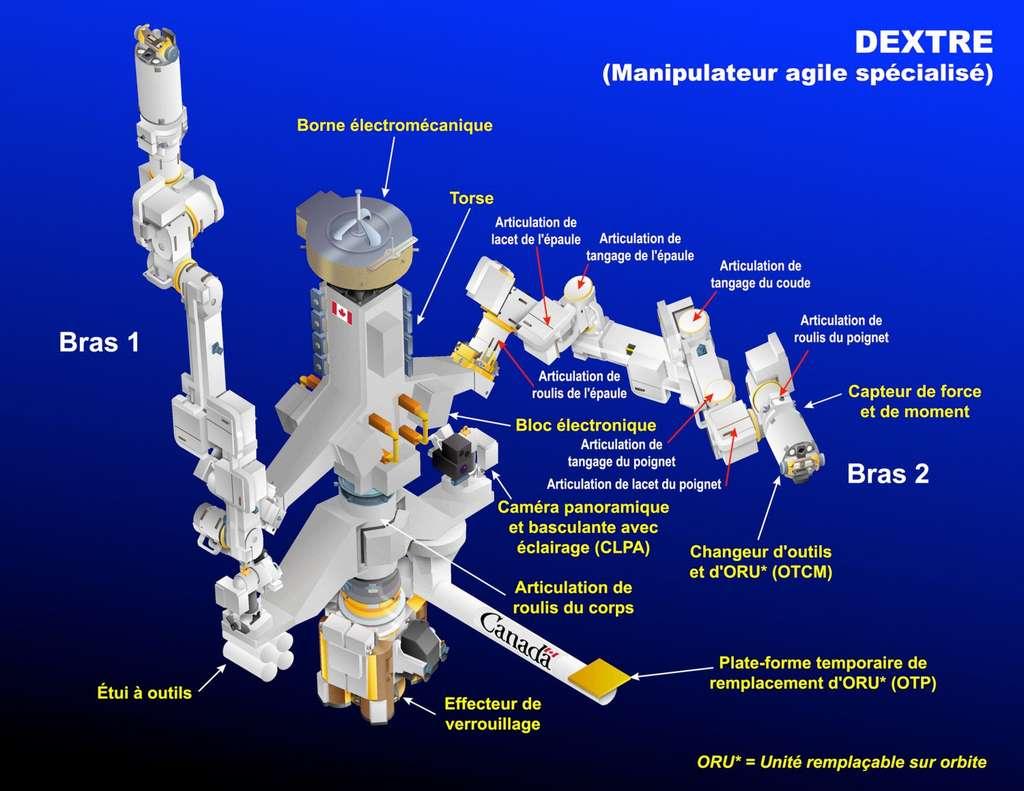 Schéma de composition de Dextre, la main robotique de la Station spatiale. © ASC