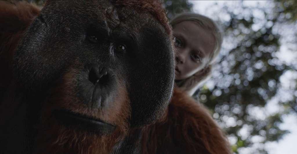 Les mêmes tests menés sur des enfants ou sur les membres d'une tribu isolée ont donné, pour les humains, des résultats plus proches de ceux des singes. © La Planète des Singes, Twentieth Century Fox France