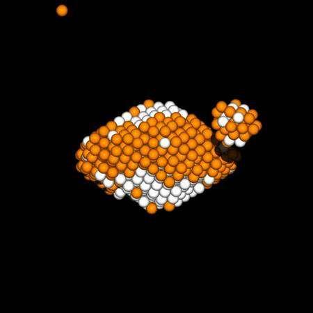 Figure 1. Simulation numérique du processus : initialement, l'astéroïde est un agrégat constitué de roches liées par la gravitation. Quand la rotation de l'astéroïde accélère par effet YORP, les roches situées à l'équateur peuvent s'échapper et celles des pôles descendre vers l'équateur ou même s'échapper. Parmi les roches qui s'échappent, sous certaines conditions, quelques-unes se réaccumulent autour de l'astéroïde et forment ainsi un satellite. © OCA/INSU