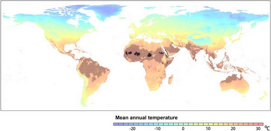 La carte des zones où les températures annuelles dépassent les 29 °C en 2070 selon le scénario testé. © Chi Xu et al. PNAS