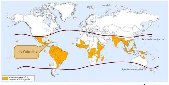 Zones à risque pour la dengue en 2010. Les lignes isothermes montrent la limite de la zone à risque au sein de laquelle Aedes aegypti est présent toute l'année. © Organisation mondiale de la santé, 2010