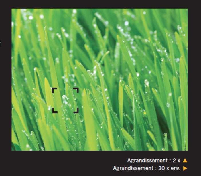 Détail de gouttelettes de rosée au microscope électronique. Dans les pays à faible pluviométrie, l'emploi d'un condensateur de rosée pour récupérer de l'eau potable est fréquent. © Giles Sparrow, Dunod, DR