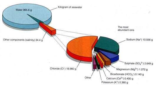 Composition de l'eau océanique. © DR, reproduction et utilisation interdites