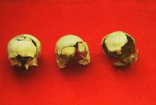 Frontbrégoua, crânes d'enfants et d'adultes « cannibalisés ». © Jean Courtin