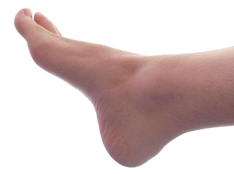 Non, la taille des pieds masculins n'est pas corrélée à celle du phallus. © Aleser, Wikimedia Commons