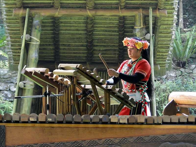 Il existe 14 peuples indigènes à Taïwan, et chacun a développé sa propre musique, à partir de bases communes, avec notamment des instruments qui n'existent pas dans la culture occidentale. Mais les divergences entre les chants traditionnels peuvent révéler la distance génétique qui sépare chaque tribu. © Bernard Gagnon, Wikipédia, cc by sa 3.0