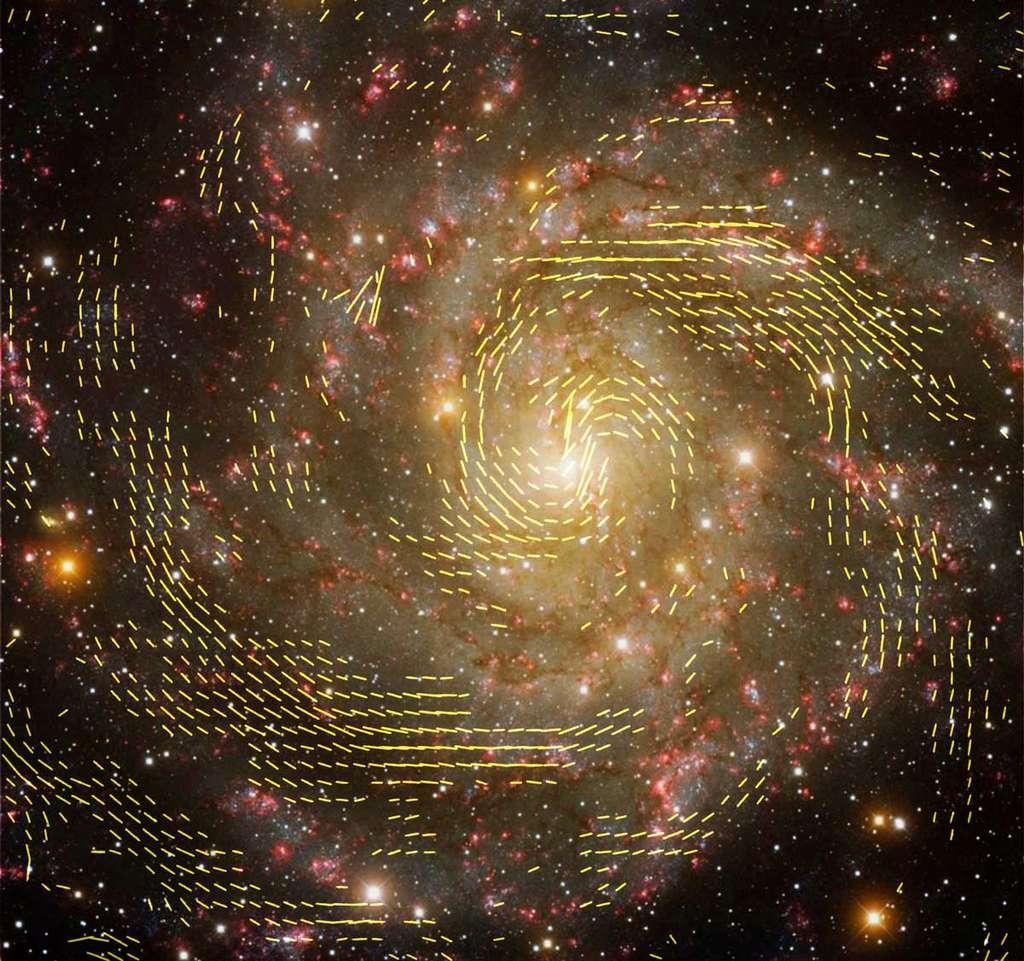 Une combinaison d'images prises dans le domaine radio et dans le domaine visible de la galaxie IC 342, en utilisant des données provenant à la fois du VLA et du radiotélescope d'Effelsberg. Les lignes indiquent l'orientation des champs magnétiques dans la galaxie. © Beck, MPIfR; NRAO, AUI, NSF; graphique : U. Klein, AIfA; image de fond : T. A. Rector, University of Alaska Anchorage et H. Schweiker, WIYN; NOAO, AURA, NSF