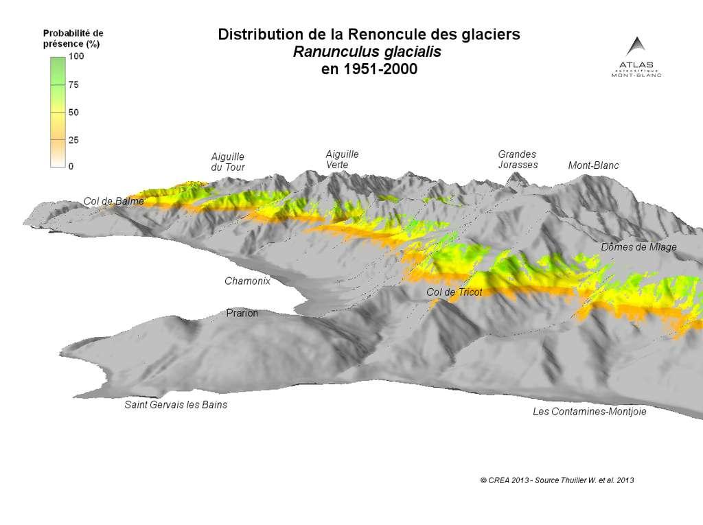 Les cartes (parfois en relief, comme celle-ci) montrent également la distribution de différentes espèces. On voit ici celle de la renoncule des glaciers de 1951 à 2000. D'ici à 2100, les renoncules seront plus rares, plus disséminées et à plus haute altitude. © Atlas du mont Blanc