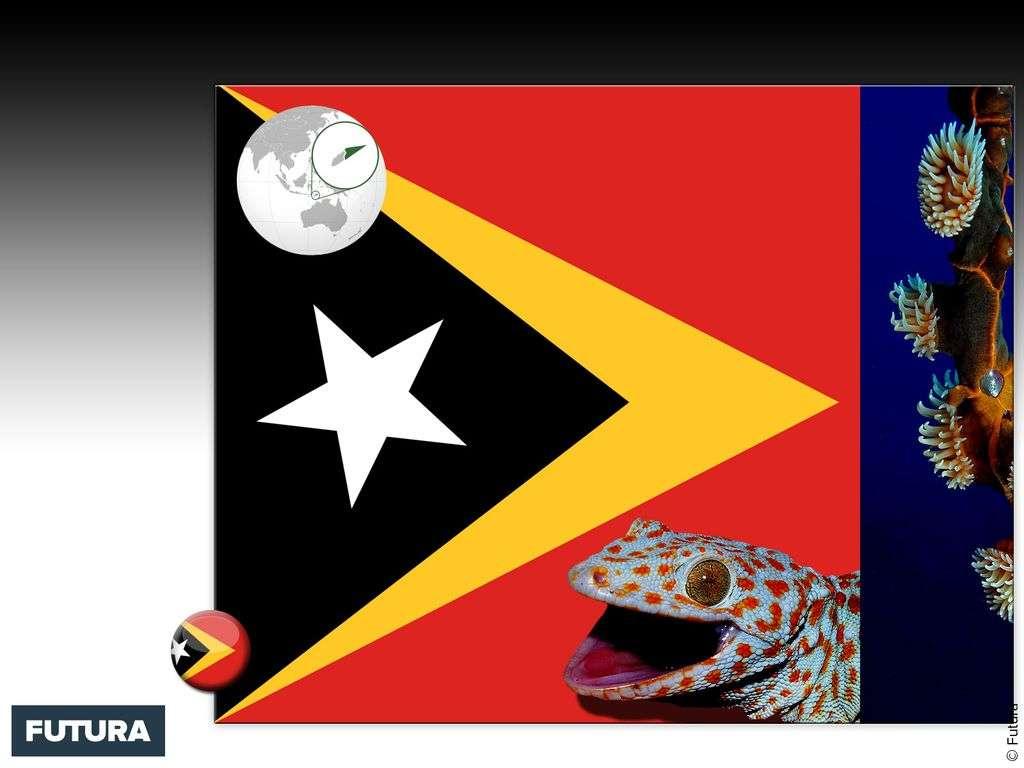 Drapeau : Timor oriental