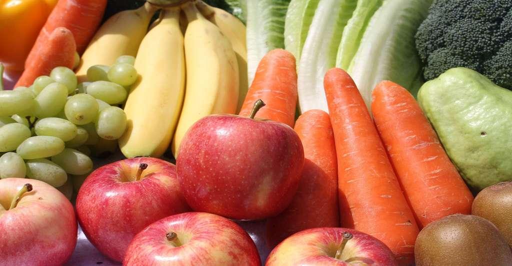 Les fruits et les légumes indispensables à notre alimentation. © LustrousTaiwan - Domaine public