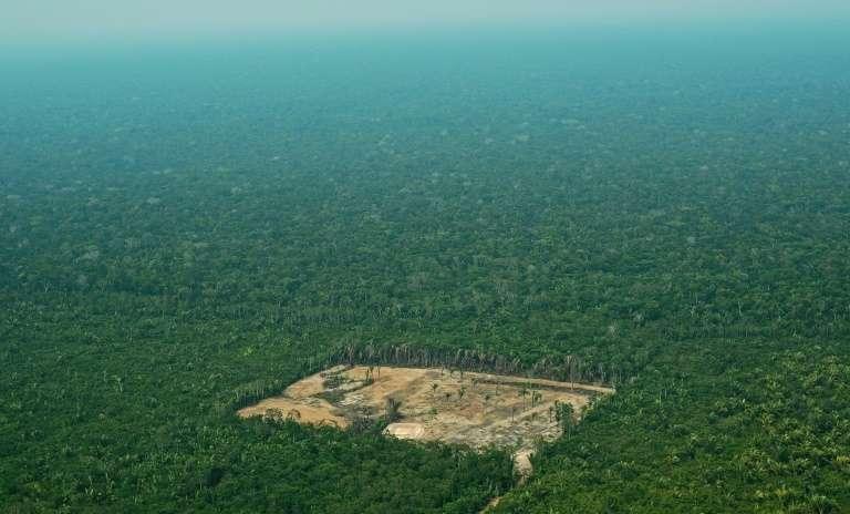 Déforestation et Covid-19 avancent de façon alarmante. L'État d'Amazonas, dont Manaus est la capitale, dénombre depuis le début du mois de mai plus de 500 morts dus au coronavirus, dont de nombreux membres de peuples autochtones, plus vulnérables aux maladies respiratoires. © Carl de Souza, AFP, Archives