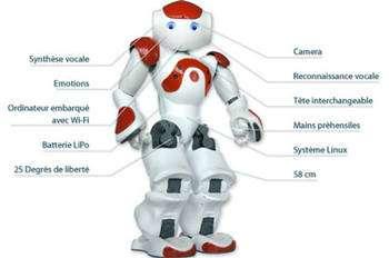 Le projet Nao a été lancé début 2005 et vise à mettre à la disposition du grand public, pour un prix abordable, un robot humanoïde disposant de fonctions mécaniques, électroniques et cognitives dignes des prototypes de recherche. Il sert aussi aux chercheurs ; des scientifiques du CNRS l'ont ainsi rendu capable d'apprendre et d'enseigner. Nao a été créé par la société française Aldebaran Robotics, rachetée ensuite par le japonais SoftBank. © Wikipedia Aldebaran Robotics
