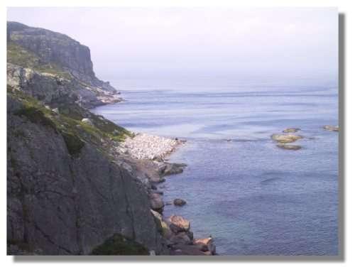 Le Cap à l'Aigle, sur l'île de St Pierre. L'île étant entourée de falaises et de côtes peu accessibles, seule une petite partie de St Pierre est habitée. © C. Marciniak