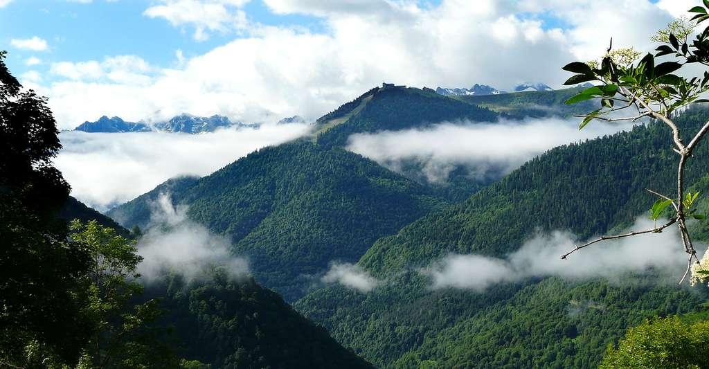 Les Pyrénées et Superbagnères vus depuis la route départementale 51a, au nord-ouest de Saccourvielle, Haute-Garonne, France. © Père Igor, Wikimedia, CC by-sa 3.0