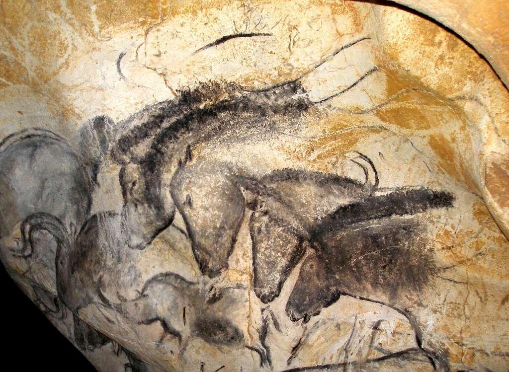 Le panneau des chevaux, une superbe fresque de la grotte Chauvet-Pont d'Arc. © Jean Clottes, DR© Jean Clottes, DR