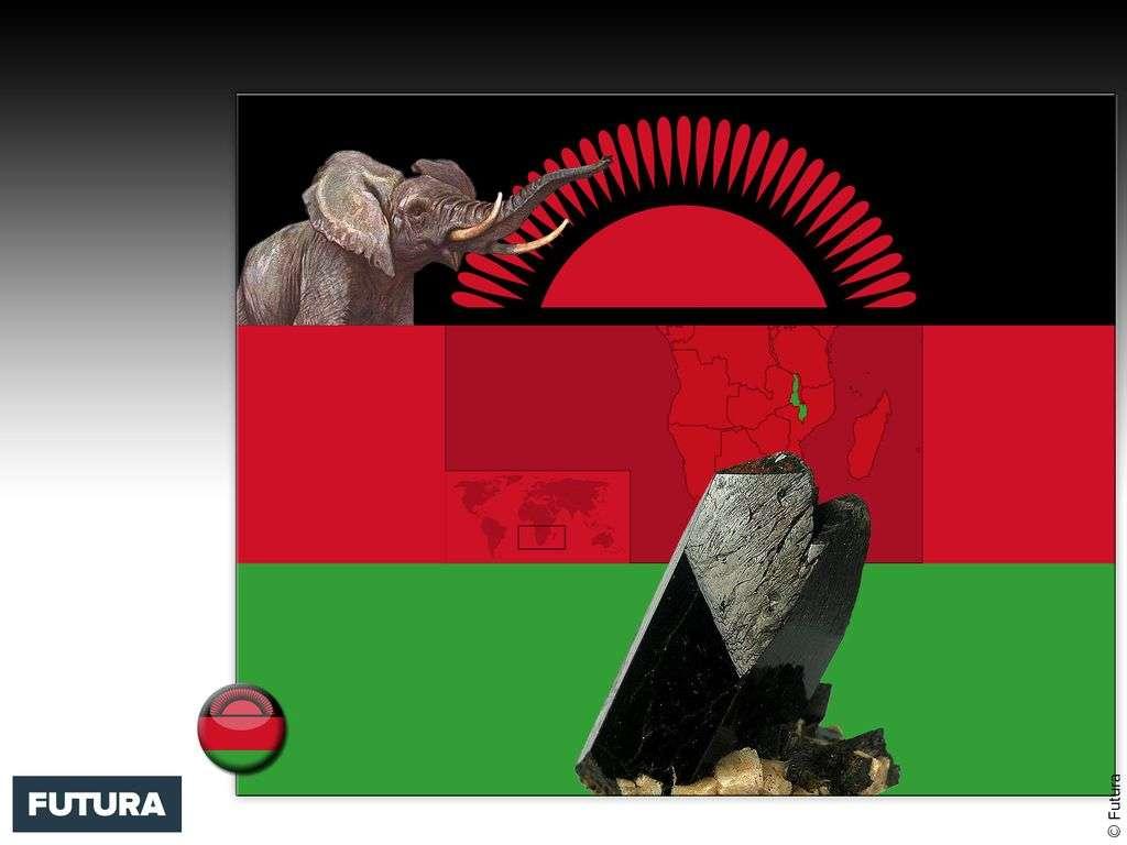 Drapeau : Malawi