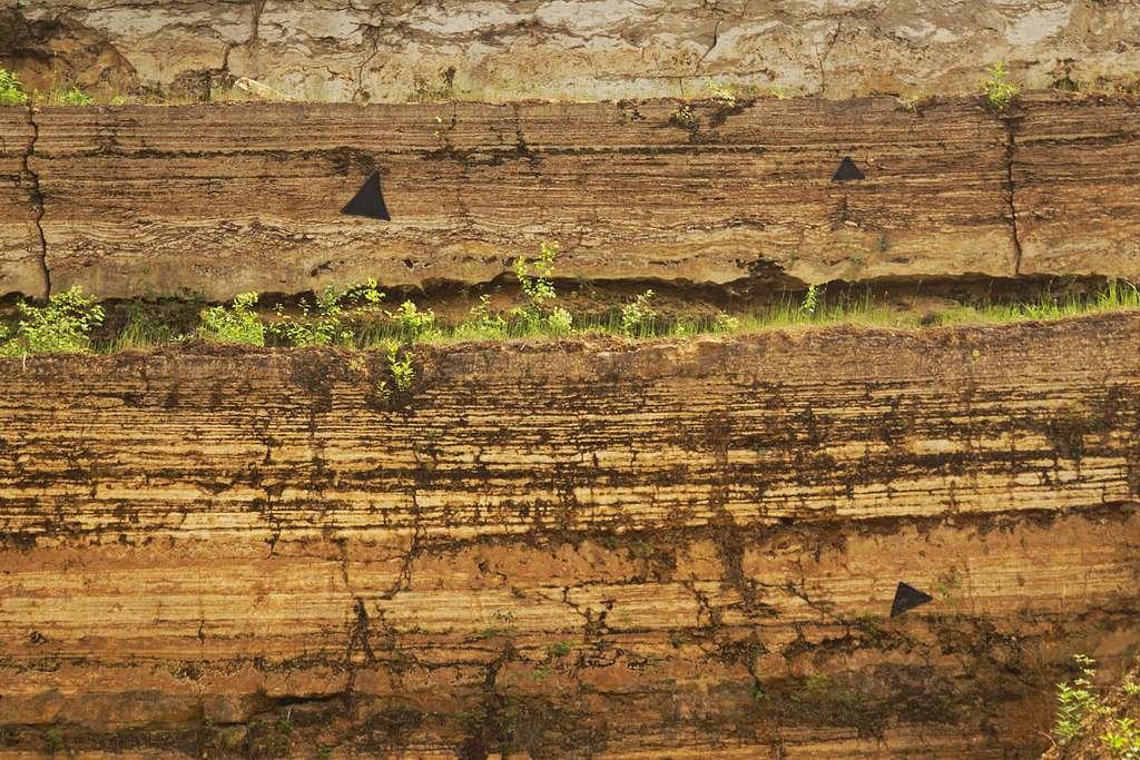 Le travertin se forme au niveau des sources calcaires par encroûtement des plantes aquatiques et riveraines. © Ustill, Wikipedia