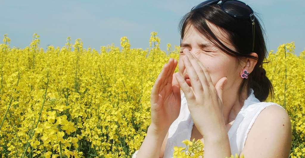 La rhinite allergique toucherait 20 à 30 % de la population. © Alex Cofaru, Shutterstock