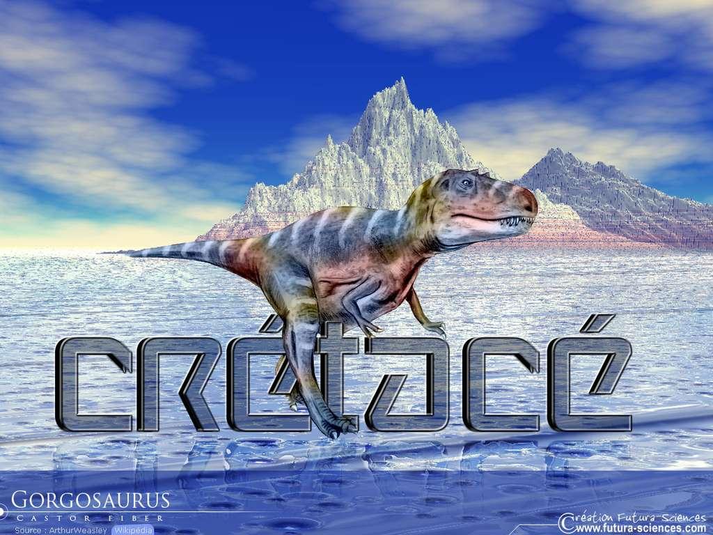 Gorgosaurus