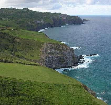 L'île d'Hawaï souffre de l'invasion d'espèces. © Forest et Starr, Creative Commons Attribution 3.0
