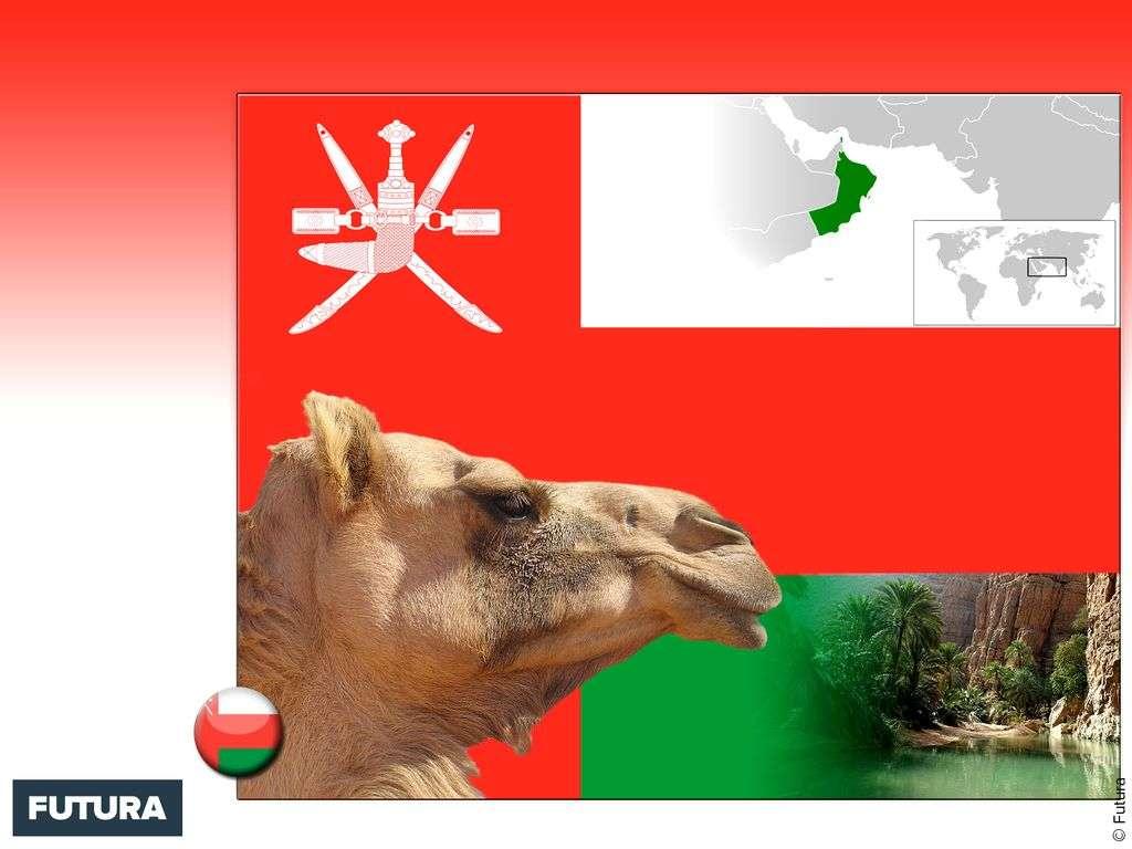 Drapeau : Oman