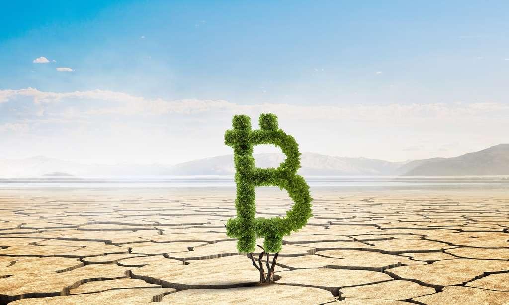 Le coût environnemental des cryptomonnaies. © Sergey Nivens, Adobe Stock