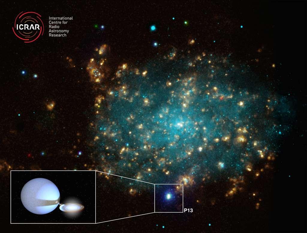 Cette image est une combinaison d'observations faites de la galaxie NGC 7793 avec en bas à gauche une image de synthèse montrant P13 et son disque d'accrétion. © Dans le domaine des rayons X: Nasa / CXC / Univ. de Strasbourg / M. Pakull et al.; dans le visible: ESO / VLT / Univ. de Strasbourg / M. Pakull et avec la raie H-alpha: NOAO / AURA / NSF / CITO 1,5; enfin: Tom Russell (ICRAR), utilisant un logiciel créé par Rob Hynes (Louisiana State University)