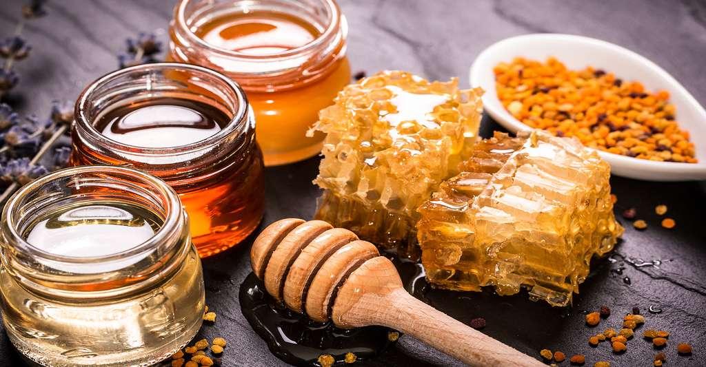 Miel, cire, pollen, propolis : de nombreux produits de la ruche sont sur cette photo. © Id-art, Shutterstock