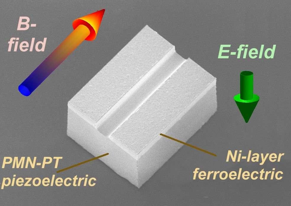 Le petit engin est guidé de l'extérieur par un champ électrique et un champ magnétique. Le premier (E-field) est vertical et génère de brutales déformations périodiques dans le matériau piézoélectrique, qui ont pour effet de le faire sautiller. Le champ magnétique (B-field) sert, lui, à déplacer Magpier. © Isir/Femto-ST