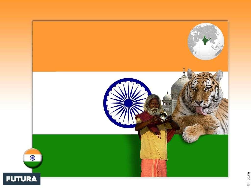 Drapeau : Inde