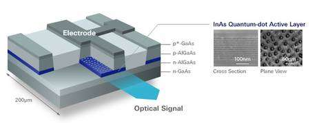Au sein d'un sandwich de semi-conducteurs (arséniure de gallium et d'aluminium), les nanocristaux, semi-conducteurs eux aussi (InAs, arséniure d'indium), forment une couche de boîtes quantiques (Quantum-dot Active Layer) qui émet une lumière laser (Optical Signal). A droite, deux images des nanocristaux en microscopie électronique, en coupe (Cross Section) et vus de dessus (Plane View). (Cliquer sur l'image pour l'agrandir.) © Quantum Dot Inc.