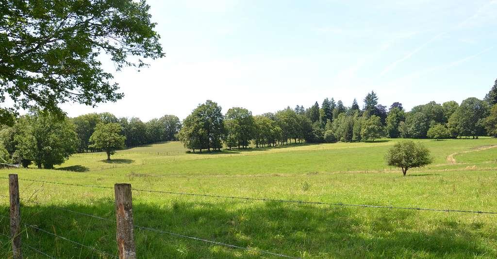 Le pays de Bray, territoire de bocages. © Babsy, Wikimedia commons, CC by-sa 3.0
