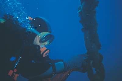 Un plongeur récolte des moules dans le bassin d'Arcachon. Elles serviront d'indicateurs de pollution. Dans les décennies à venir, leurs coquilles montreront sans doute les signes d'une acidité accrue de l'eau de mer. Crédit : CNRS Photothèque / Garrigues Philippe