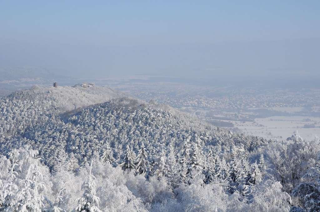 Les sons naturels, une source d'apaisement ? Ici, le Parc naturel régional des Vosges du Nord. © Sylvain Citerne