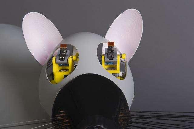 La robotique biomimétique : reproduire au mieux le mécanisme d'un animal. © CNRS Photothèque/ISIR/Rajau Benoît