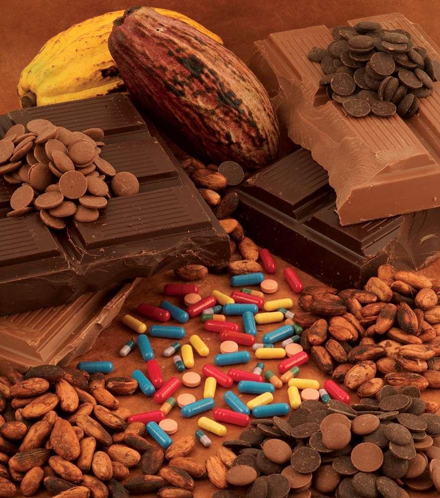 Quelles sont les vertus du chocolat ? © J. Weber, Inra