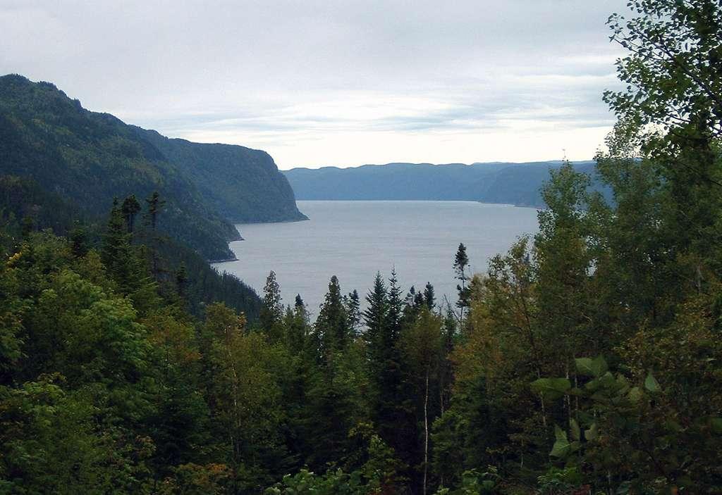 Fjord du Saguenay, vu de l'anse de Tabatière. © Fralambert, GNU 1.2