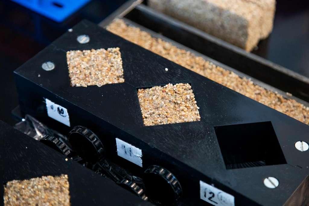 Des moules dans lesquels se fabriquent les briques vivantes des chercheurs de l'université du Colorado à Boulder (États-Unis) après que la solution contenant les cyanobactéries a été portée à 30 °C. © College of Engineering and applied science, Colorado University Boulder