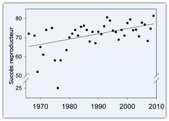 Évolution du succès reproducteur des albatros hurleurs (en % ; 100 % si l'ensemble des œufs donne des juvéniles) au cours de la période 1965-2010. © Weimerskirch et al. 2012, Science - adaptation Futura-Sciences