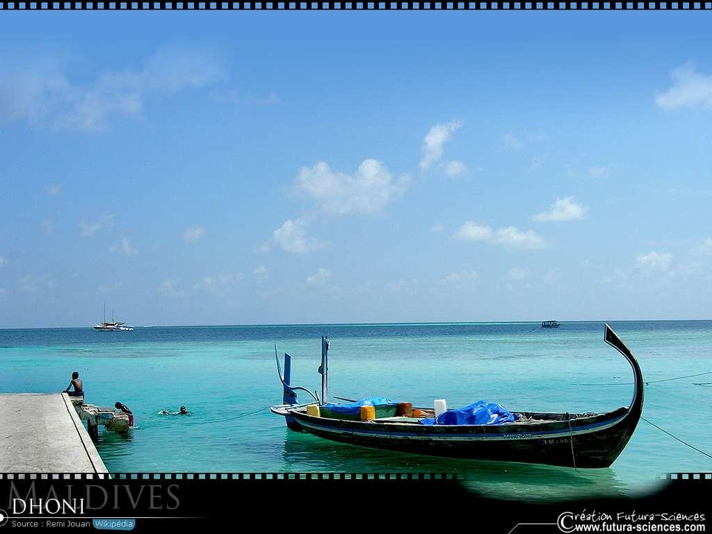 Maldives Dhoni