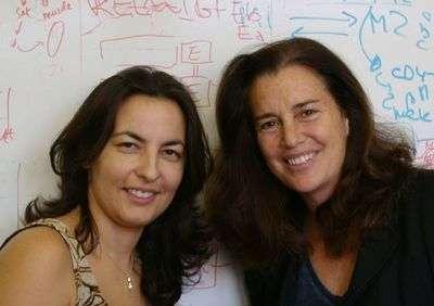 Foteini Mourkioti et Nadia Rosenthal deux des auteurs de l'étude