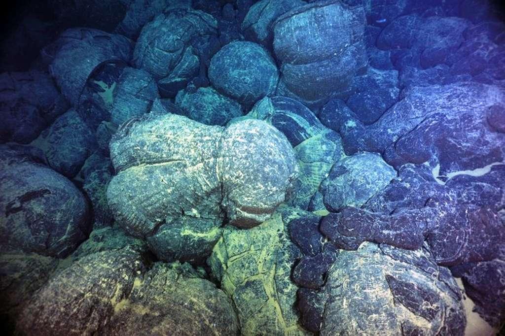 Sous l'eau, au niveau des dorsales océaniques, les laves basaltiques s'épanchent en donnant des laves en coussins comme celles sur cette photo. En se refroidissant, elles s'aimantent et gardent la mémoire de la polarité et de l'intensité du champ magnétique terrestre. © University of Washingto