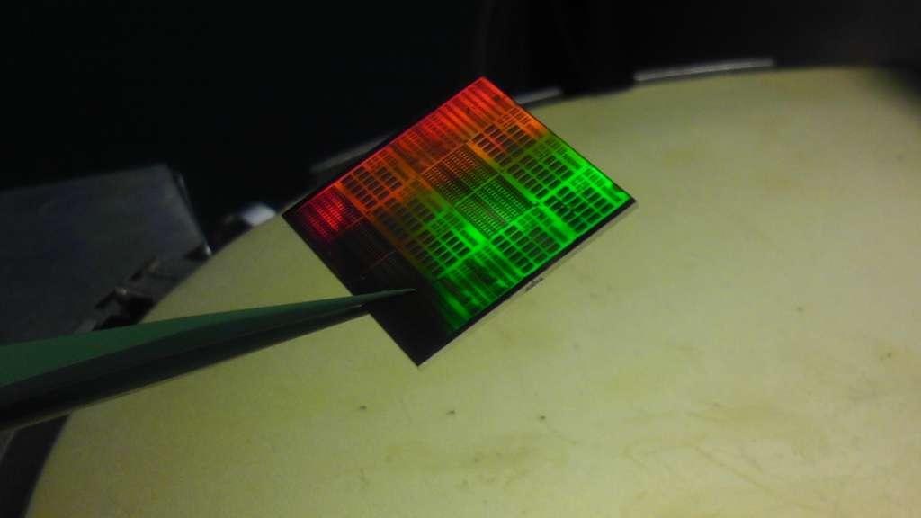 Une tranche de silicium sur laquelle se trouvent plusieurs dizaines de récepteurs radio au graphène. IBM a trouvé un moyen de ne pas les endommager à la fabrication. © IBM Research