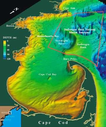 Sur la carte, le Stellwagen Bank National Marine Sanctuary, le sanctuaire où les baleines ont été étudiées, est délimité en rouge. Il se situe au sud du golfe du Maine, sur la côte nord-est de l'Amérique du Nord. © USGS