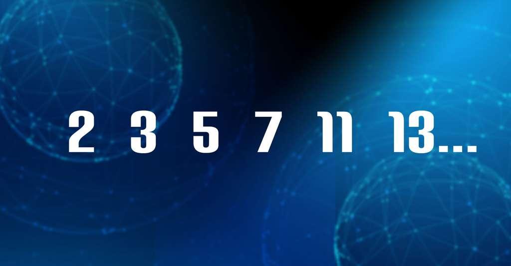 Découvrez un livre sur les nombres premiers. © Futura