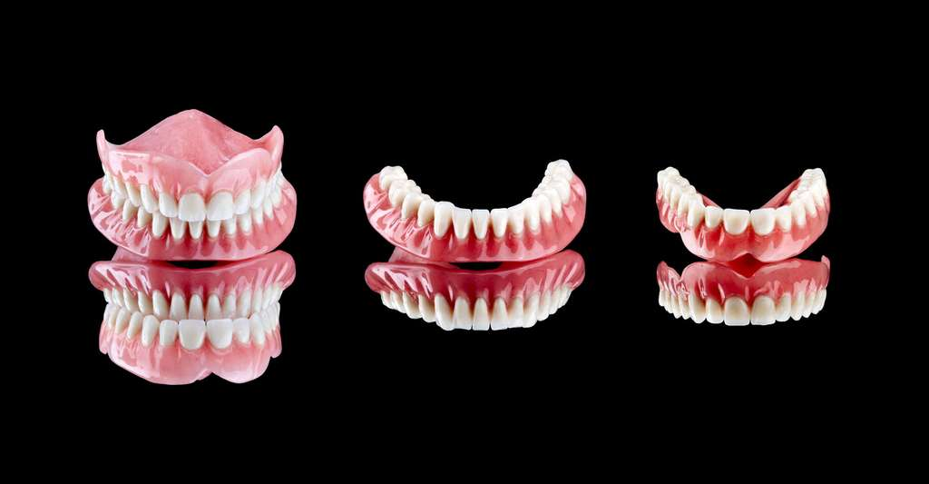 Prothèses dentaires amovibles. © Marcosrivero, Fotolia