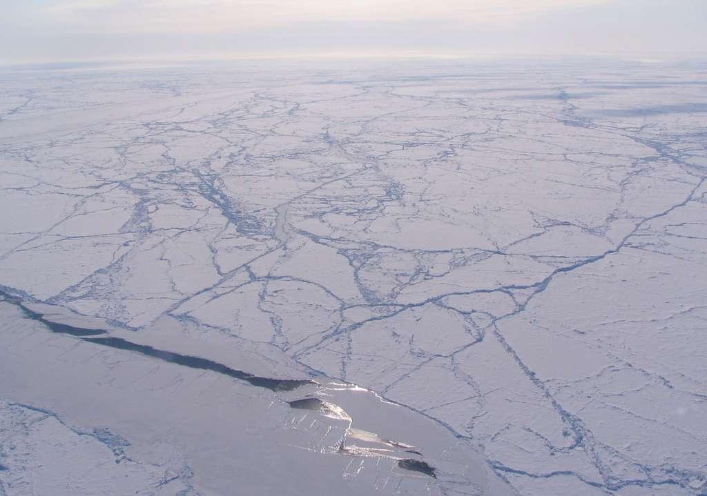 La banquise arctique est mouvante. Elle tourne sur elle-même, fond partiellement durant l'été et jusqu'à l'automne, pour se reformer ensuite. L'étude de cette dynamique est importante pour les météorologues. © Sinead Farrell, Nasa