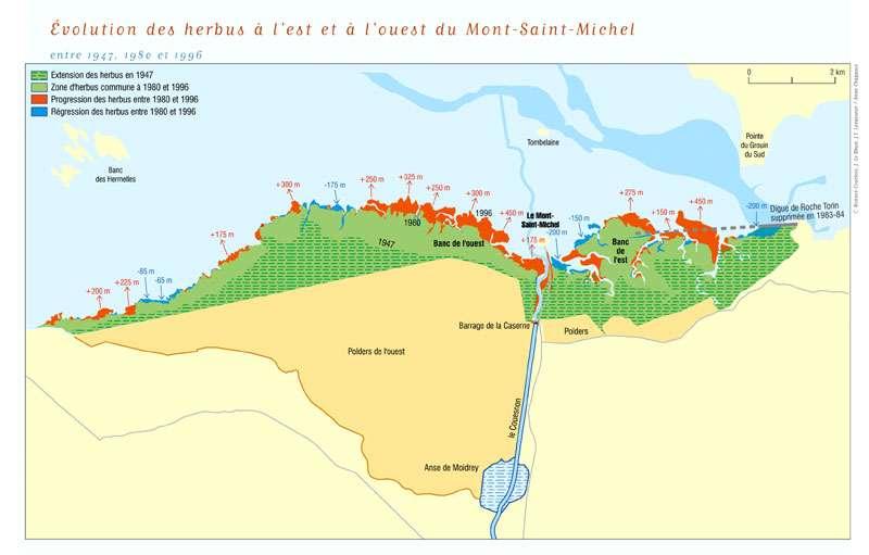 Les herbus autour du Mont-Saint-Michel