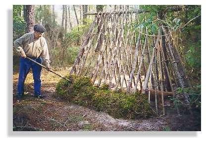 L'habitat des résiniers - Les résiniers travaillaient dans la forêt par tous les temps. Ces petits abris de branches et de mousse leurs permettaient de se protéger lors de fortes intempéries. © Claude Courau - Collection privée - Tous droits réservés