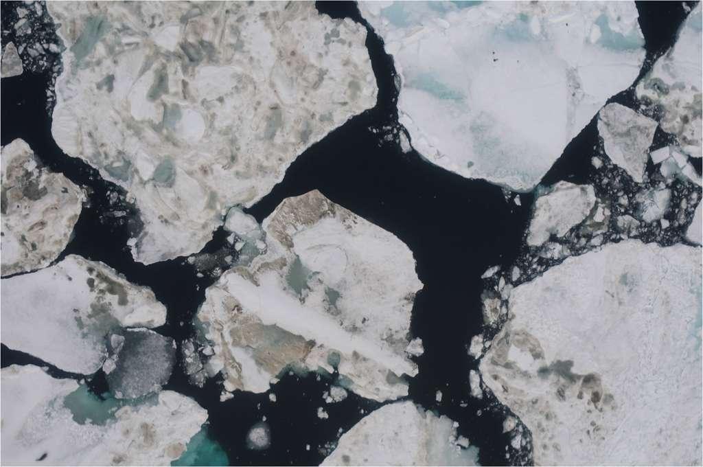 Devinette : trouver le phoque sur cette image prise en vol par le drone Eagle Scan. Réponse dans l'image suivante. © CIRES
